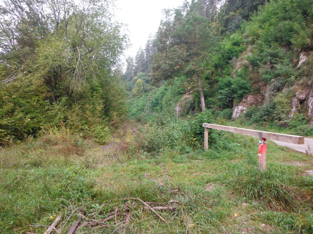 Strecke der Württembergischen Schwarzwaldbahn entlang der Tälesbach Deponie vor der Rodung Oktober 2013