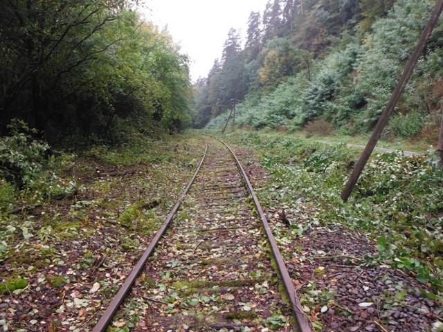Strecke der Württembergischen Schwarzwaldbahn entlang der Tälesbach Deponie nach der Rodung Oktober 2013